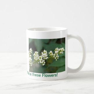 Maravilla blanca tazas de café