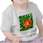 Maravilla brillante camiseta