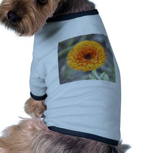 Maravilla Camisetas Mascota