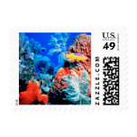 Maravilla coralina sello