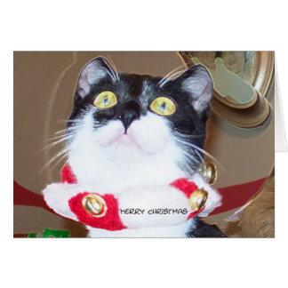 Maravilla del navidad tarjeta de felicitación