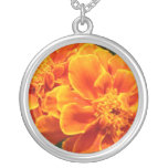 Maravillas anaranjadas florecientes colgante