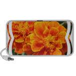 Maravillas anaranjadas florecientes iPod altavoz