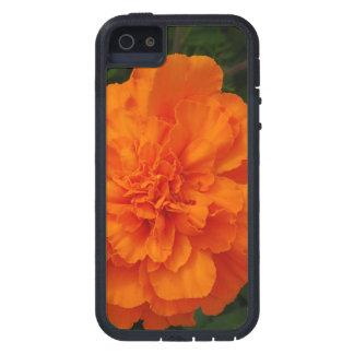 Maravillas anaranjadas iPhone 5 Case-Mate coberturas