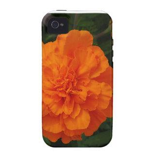 Maravillas anaranjadas Case-Mate iPhone 4 funda