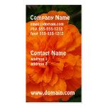 Maravillas anaranjadas plantilla de tarjeta de negocio