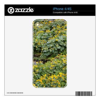 Maravillas de pantano iPhone 4S calcomanía