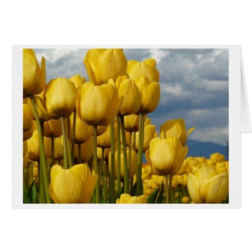 Maravillas del amarillo tarjeta de felicitación
