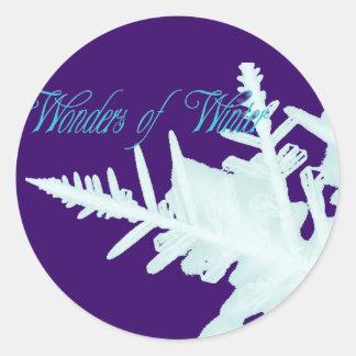 Maravillas del invierno pegatina redonda