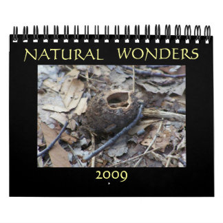 Maravillas naturales 2009 calendario