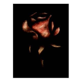 marbel rose postcard