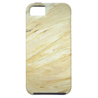 Marble Faux Finish iPhone 5/5S Case