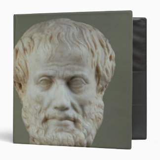 Marble head of Aristotle Binder
