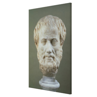 Marble head of Aristotle Gallery Wrap Canvas