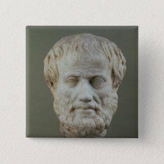 Marble head of Aristotle Pinback Button