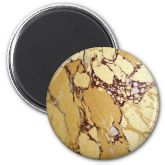 Marble in Shades of Yellow Magnet