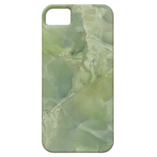 Marble Moss Green Neutral Slate Stone iPhone SE/5/5s Case
