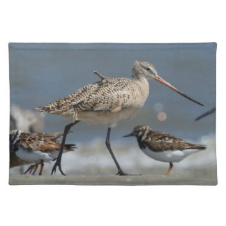 Marbled godwit (Limosa fedoa), Little St Simon's Cloth Placemat