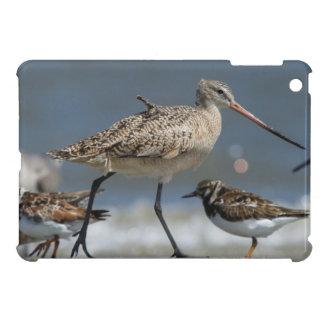 Marbled godwit (Limosa fedoa), Little St Simon's iPad Mini Case