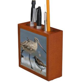 Marbled godwit (Limosa fedoa), Little St Simon's Pencil Holder