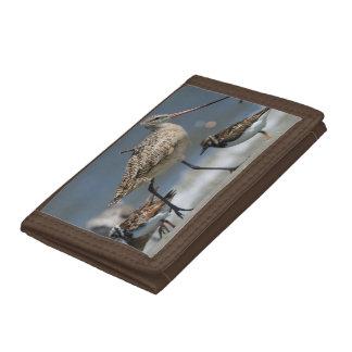 Marbled godwit (Limosa fedoa), Little St Simon's Trifold Wallets