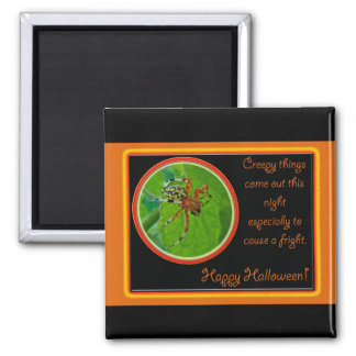 Marbled Orb Weaver Spider Happy Halloween Items 2 Inch Square Magnet