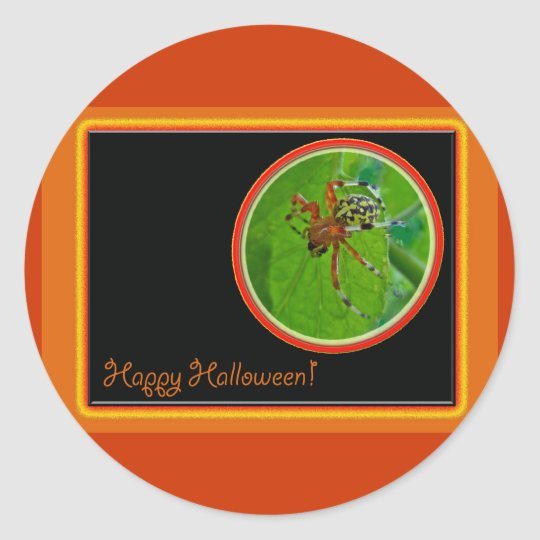 Marbled Orb Weaver Spider Happy Halloween Items Classic Round Sticker