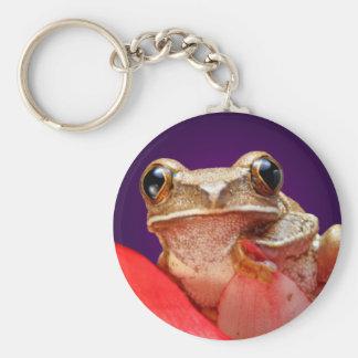 Marbled Reed Frog Cute Big Eyes Red Flower Purple Keychain