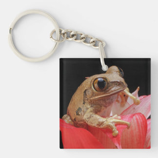 Marbled Reed Frog Square Acrylic Keychains