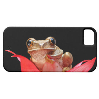 Marbled Reed Frog Pink Red Flower iPhone 5 Case