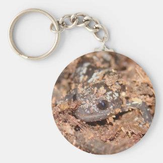 marbled salamander key chain