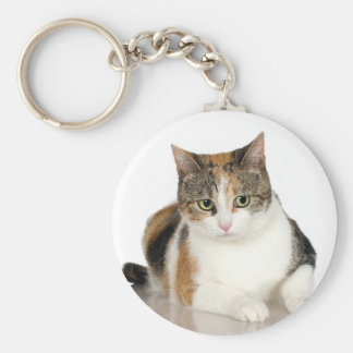 Marbled Tabby Cat Key Chains