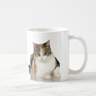Marbled Tabby Cat Mugs