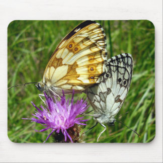 Marbled White Butterflies Mouse Mat
