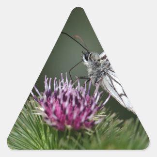 Marbled White butterfly, Melanargia galathea Triangle Sticker