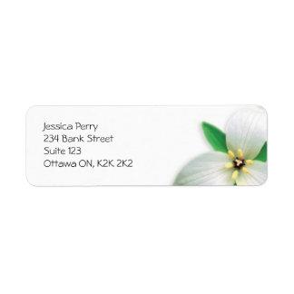 Marca de la flor - blanco etiquetas de remite