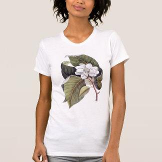 Marca meridional Catesby de la camiseta de la