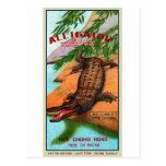 Marca retra del cocodrilo del petardo del kitsch d tarjetas postales