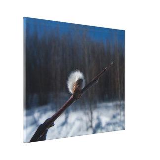 Marcador de la primavera lienzo envuelto para galerias
