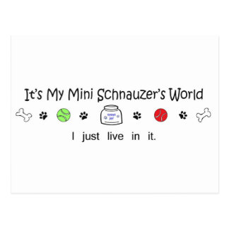 march15b15MiniSchnauzer.jpg Postcard