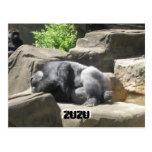 march7 927, ZuZu, ZuZu Postal
