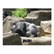 march7 927, ZuZu, ZuZu Postcard