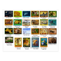 March 31, 2018, index page, 24 pack postcard