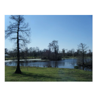 March 4th_Swampy Park Postcards