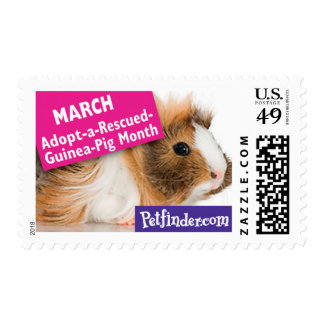MARCH - Adopt-a-Rescued-Guinea-Pig month Postage