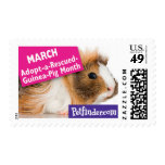 MARCH - Adopt-a-Rescued-Guinea-Pig month Postage Stamps