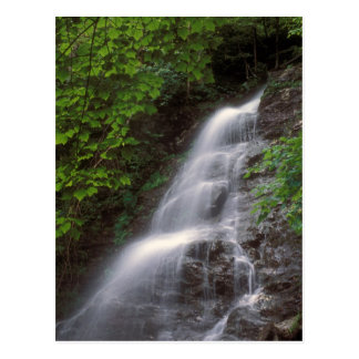 March Cataract Falls Mount Greylock MA Postcard