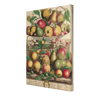 March, from 'Twelve Months of Fruits' Canvas Print