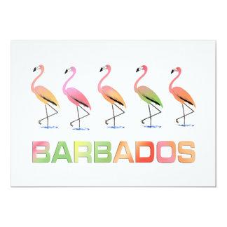 March of the Tropical Flamingos BARBADOS Card