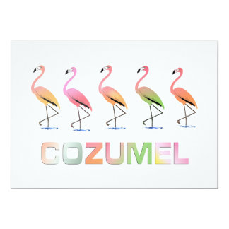 March of the Tropical Flamingos COZUMEL Card